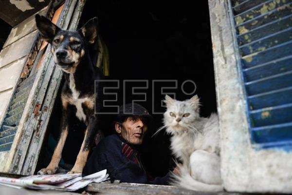 Elderly Egyptian man, Naguib, and a stray dog and cat look out from the window of his burnt-out room where he lives along with stray dogs and cats at in Cairo, Egypt, Mar. 11, 2017. EPA/MOHAMED HOSSAM