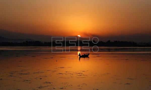 A fisherman casts his net in the waters of Dal Lake in Srinagar