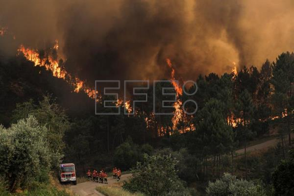 Forest fire in Oleiros, Portugal