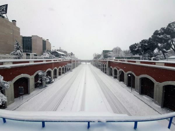 Madrid brought to standstill as snow blankets city