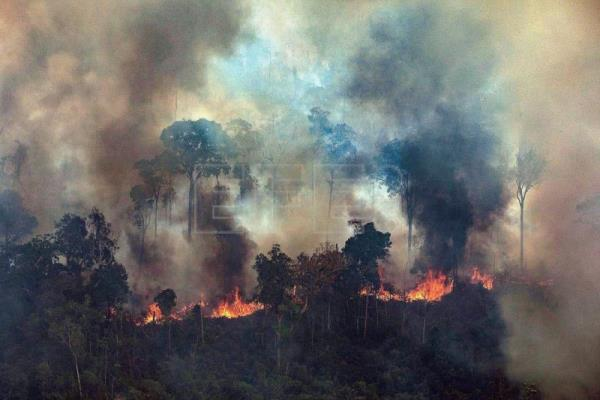 World leaders pledge aid for Amazon wildfires