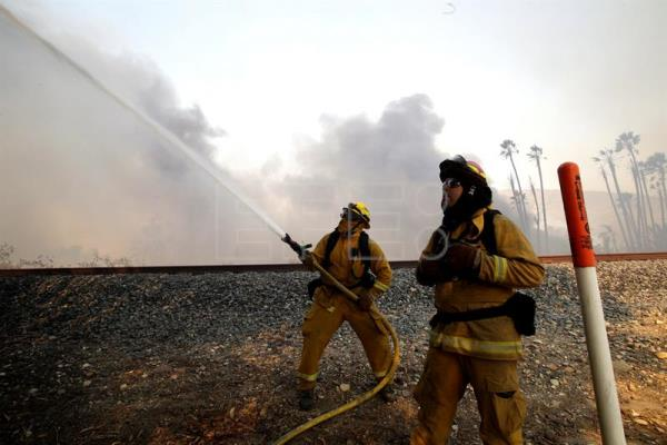 Firefighters hose down a burning tree as they protect the beach community of Faria Beach, California, USA Dec. 7, 2017. EPA-EFE/MIKE NELSON