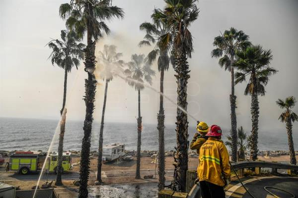 Ventura County firefighters spray water on burning palm trees as they work the Thomas fire along the Pacific Coast Highway near Ventura, California, USA, Dec. 7, 2017. EPA-EFE/JOHN CETRINO