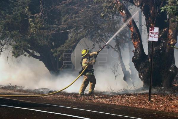 A Firefighter hoses down a burning tree as they protect the beach community of Faria Beach, California, USA, Dec. 7, 2017. EPA-EFE/MIKE NELSON