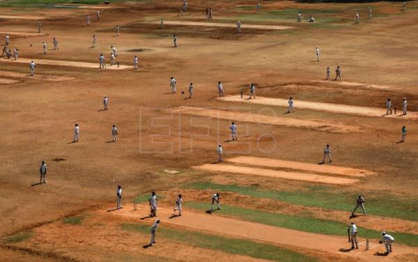 Cricket mania: Indians caught and bowled by the Gentleman's Game