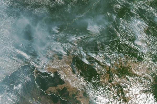 International community calls for saving of the Amazon, engulfed in fire