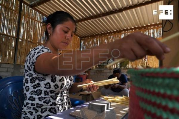 Mexicans make drinking straws from reeds to curb use of plastic