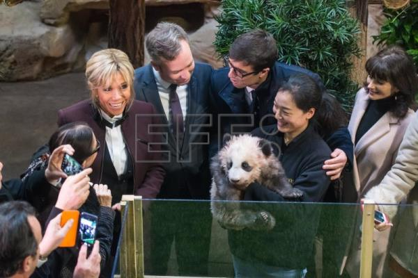 France s first lady baptizes chinese panda in first for Brigitte camus