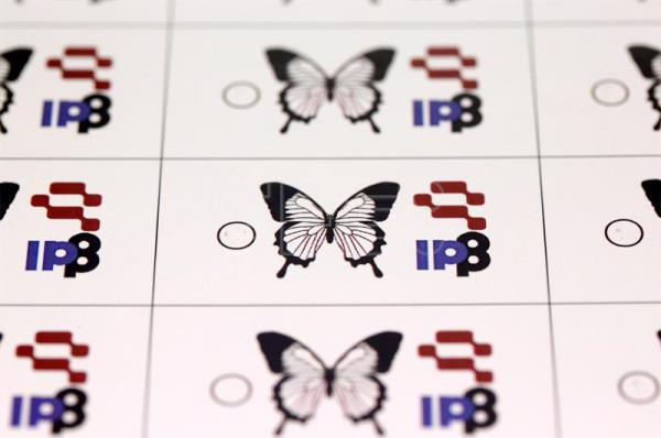 Teslagram anti-forgery system made of butterfly wing scales