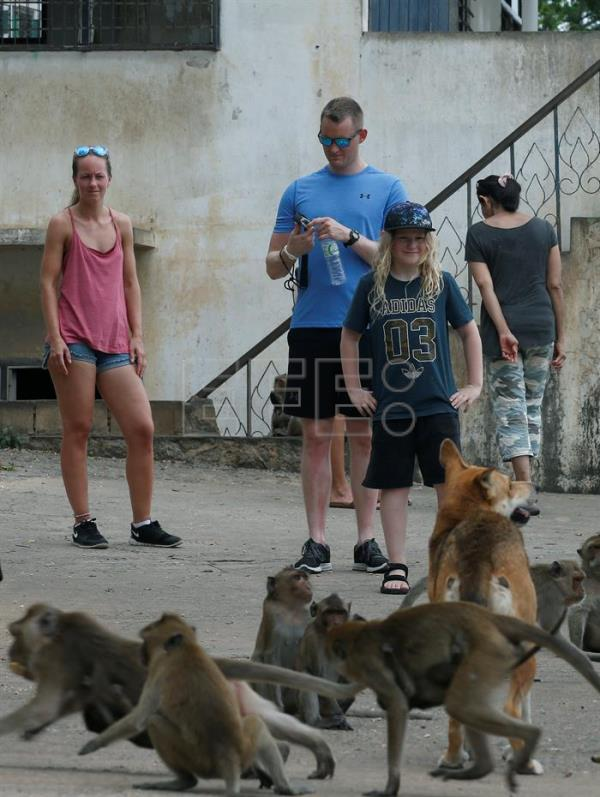 Foreign tourists look at monkeys at the viewpoint of Wat Khao Takiab temple, before Thai National Park officials caught them for sterilization in a bid to control the birth rate of the monkey population in near Hua Hin city, Prachuap Khiri Khan Province, Thailand, Jul. 15, 2017. EPA/NARONG SANGNAK