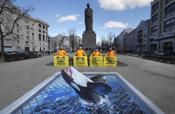 Greenpeace protests whale jail in Russian capital