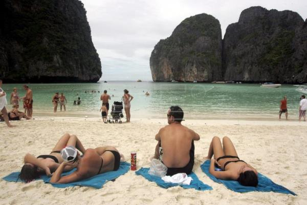 Wildlife recovers but tourism suffers from closure of The Beach in Thailand
