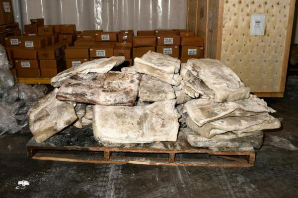 Australian police seize huge meth stash smuggled in from Mexico in cowhides