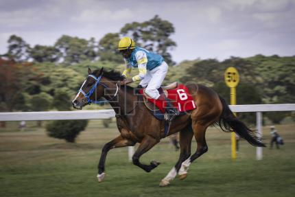 Online betting, a need for workers' rights change horse racing in Africa