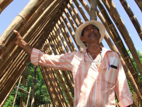 Bamboo becomes go-to material for earthquake-proof buildings in Ecuador