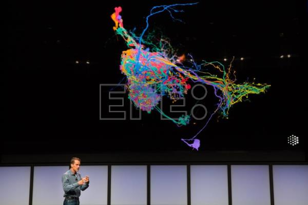 Google backs AI to solve global issues