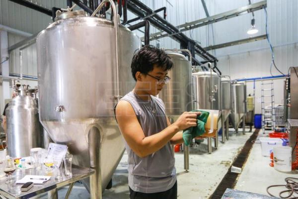 Westerners conquering Vietnamese market with pangolin-inspired craft beer