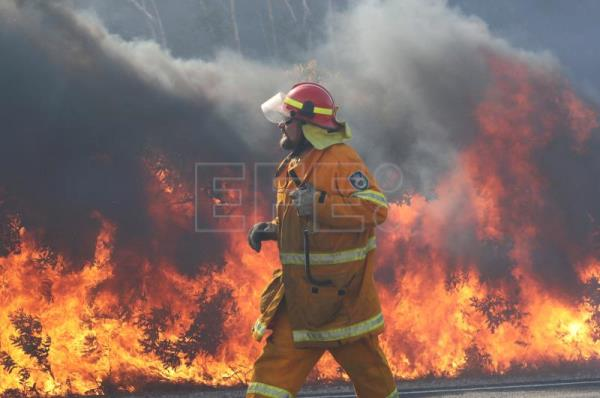 Hundreds evacuated due to bushfires in eastern Australia