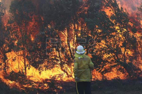 Children behind 8 fires lit in eastern Australia