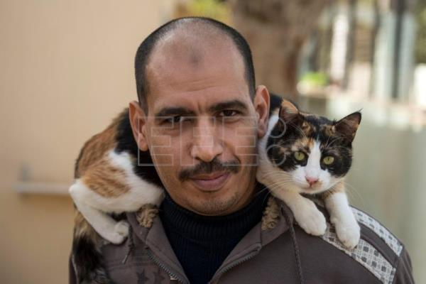 Ashraf Saber, who runs a pets' motel and shelter, poses for a photo at the hotel in Giza, Egypt, Feb. 7, 2019. EPA-EFE/MOHAMED HOSSAM