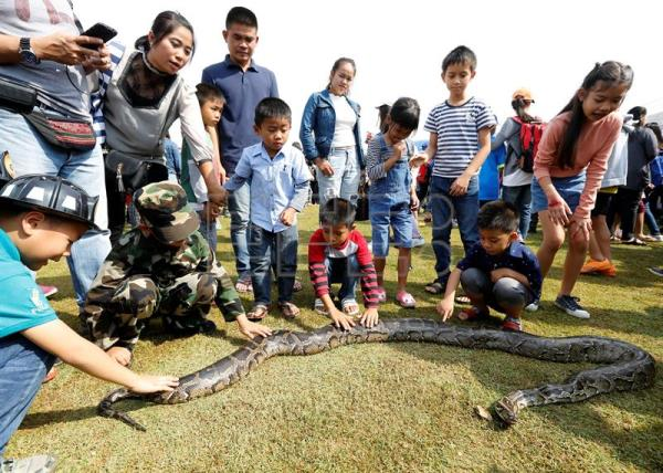 Thai children touch a python snake during National Children's Day events at a military base in Bangkok, Thailand, 13 January 2018. EFE
