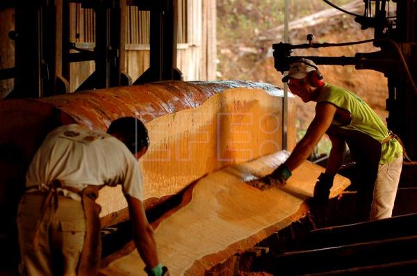 An undated file photo showing a sawmill plant in Brazil. EPA-EFE FILE/MARCELO SAYAO