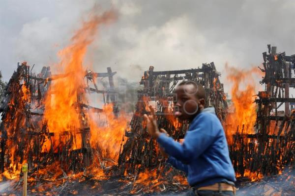 A young boy walks in front of burning piles of illegal firearms at a field in Ngong, in the outskirts of the capital Nairobi, Kenya, 15 November 2016.EPA/DAI KUROKAWA