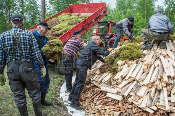 Villagers and tar heritage enthusiasts cover the stacked pile of 'tervas' wood with moss as they build a pine tar pit on the grounds of the Yli-Kirra Outdoor Agricultural Museum in Punkalaidun, Finland, June 27, 2017. EPA/MARKKU OJALA