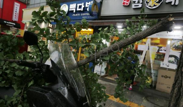Three dead as South Korea cleans up after Typhoon Lingling