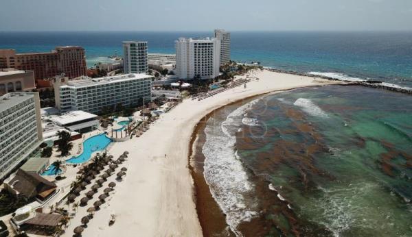 Massive seaweed influx in Cancun's hotel zone | Life