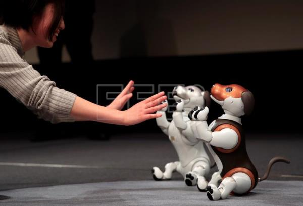 Sony presents new version of robot-dog Aibo | Science