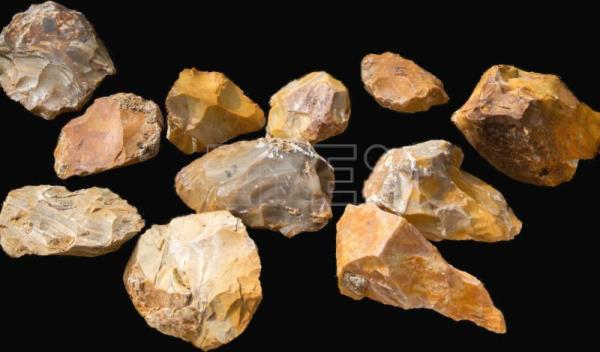 500 000 Year Old Stone Tools Discovered In Northern Israel