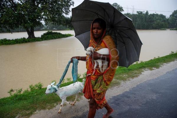 A woman carries her goats at a street along a flood-affected area of Topa village in Saptari district, Nepal, Aug. 12, 2017. EPA/NARENDRA SHRESTHA