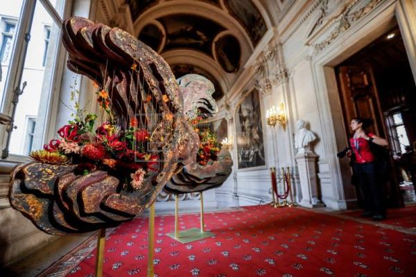 Thousands of festival flowers adorn Brussels Town Hall